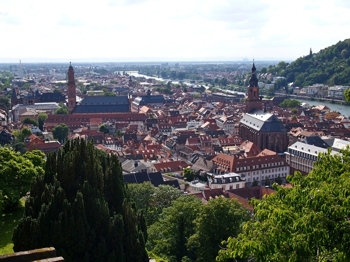 Heidelberg From Above