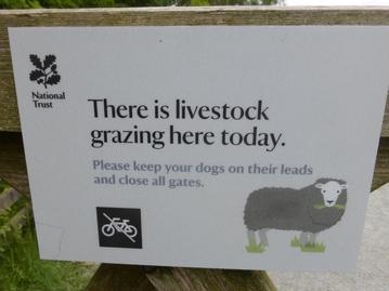 LambingSign